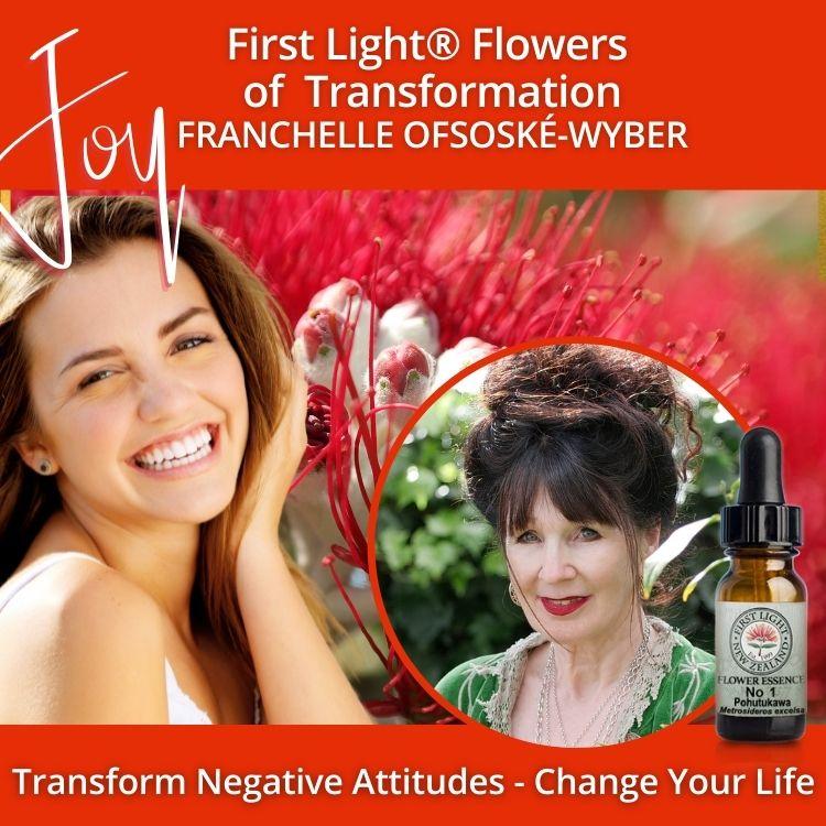 2-3 April 2011 - First Light® Flowers of Transformation Workshop, Porirua