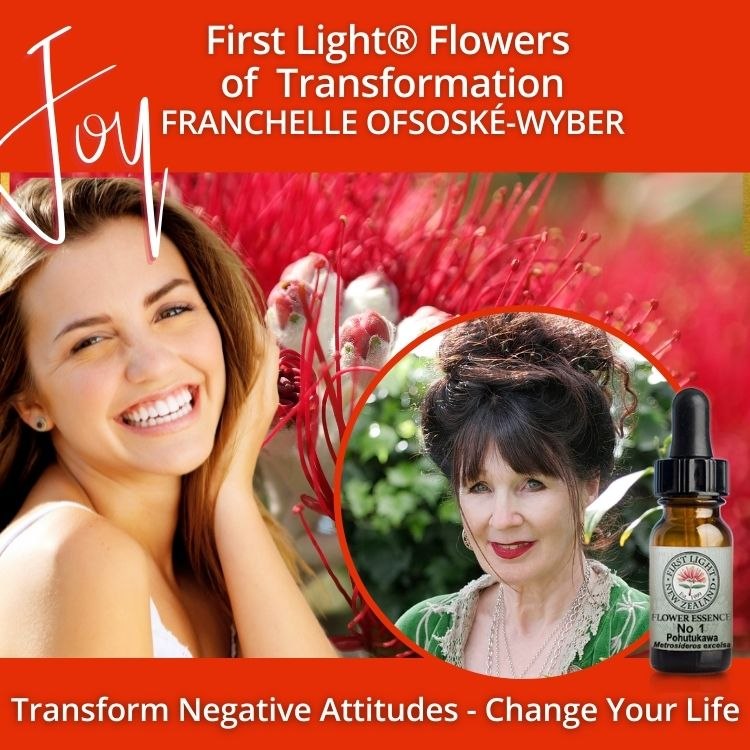 26-27 September 2009 - First Light® Flowers of Transformation Workshop, Auckland