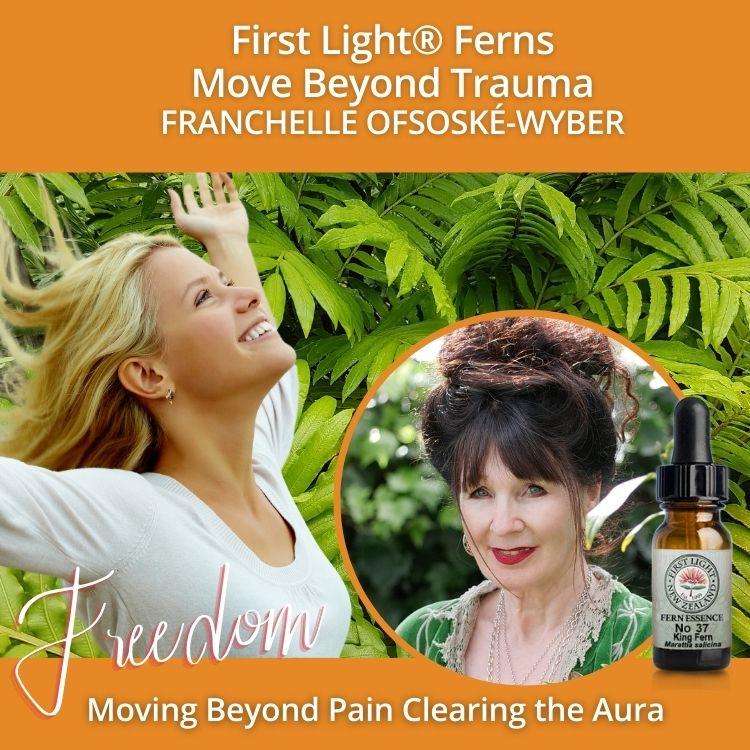 22-23 June 2013 - First Light® Ferns Life Trauma Workshop, Auckland