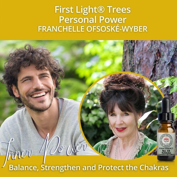 12-13 June 2010 - First Light® Trees Personal Power Workshop, Christchurch