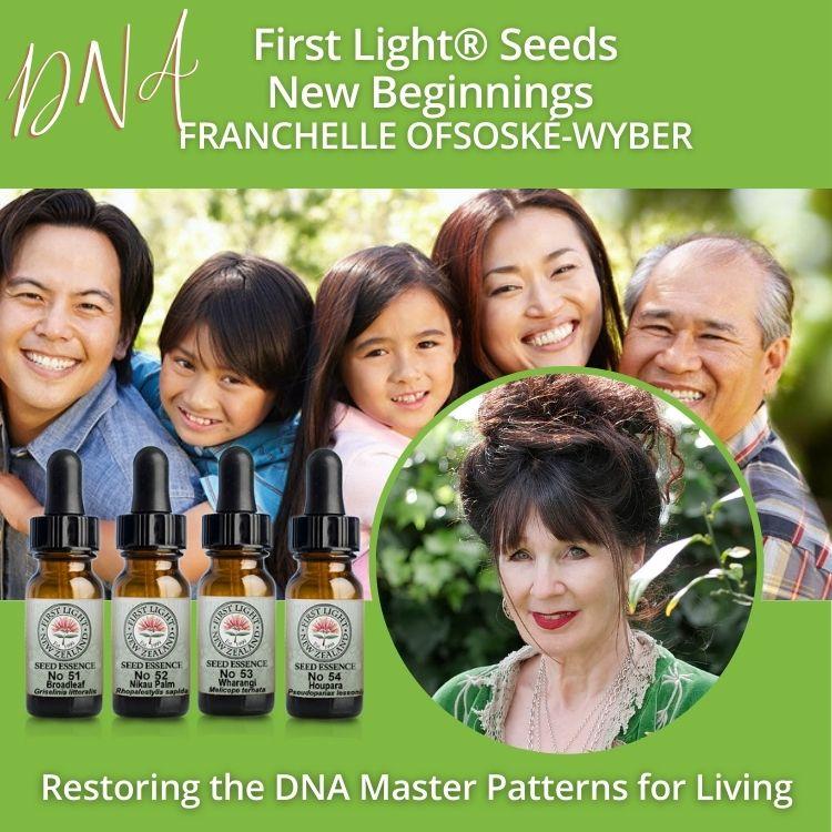 12-13 October 2013 - First Light® Seeds New Beginnings Workshop, Auckland