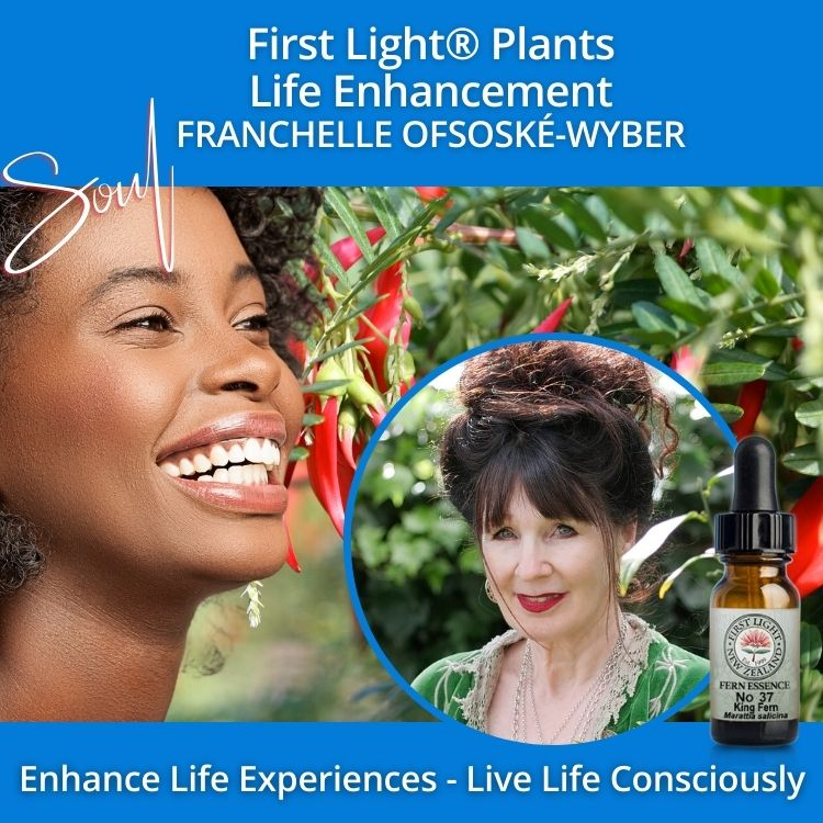 29-30 October 2011 - First Light® Plants Life Enhancement Workshop, Auckland