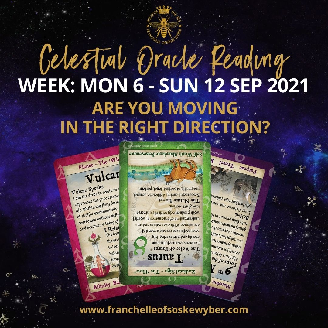#376 Are You Moving in the Right Direction? ~ Celestial Oracle Monday 6th - Sunday 12th September 2021