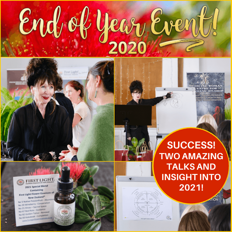 5 December 2020 - Friends of First Light and Medicine Woman End of Year Event 2020